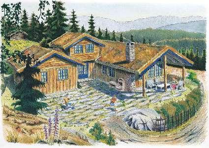 Noorwegen ~ �stlandet (OOST) ~ Telemark - Stenen woning