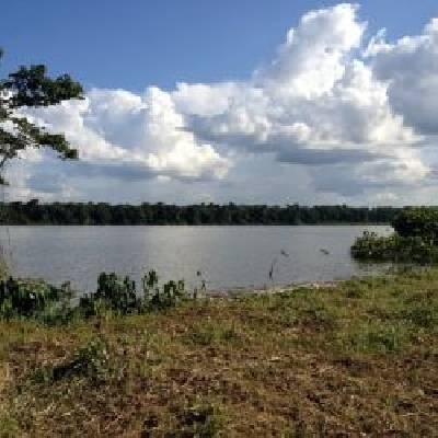 Suriname ~ Paramaribo - Bouwgrond