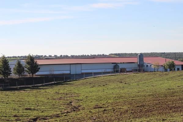 Portugal ~ Alentejo ~ Beja ~ Vidigueira - Landbouw-object
