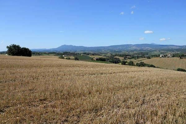 Onroerend goed bject te koop in Castiglione del Lago - Itali�