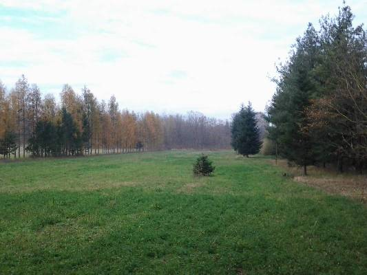 Hongarije ~ Pannonia (West) ~ Somogy (Kaposv�r) - Bouwgrond -  (M24318)