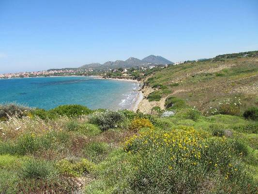Griekenland ~ Peloponnese - Grond