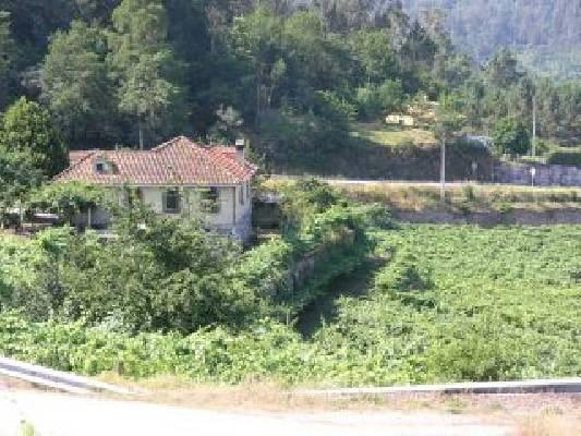 Spanje ~ Galicië ~ Pontevedra ~ Kust - Wijn-object