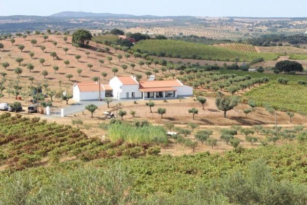Portugal ~ Beja ~ Vidigueira - Landgoed