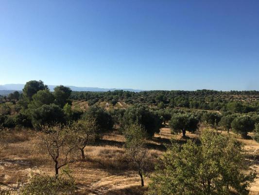 Spanje ~ Aragón ~ Teruel ~ Kust - Camping