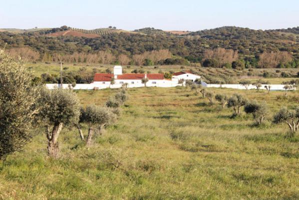 (Woon)boerderij te koop in Portugal - Beja - Alvito - € 450.000