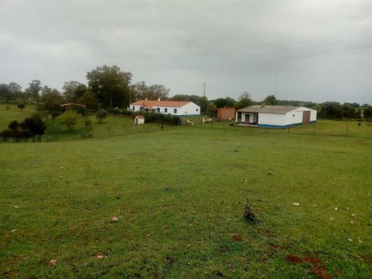 Portugal ~ Alentejo ~ Beja ~ M�rtola - (Woon)boerderij