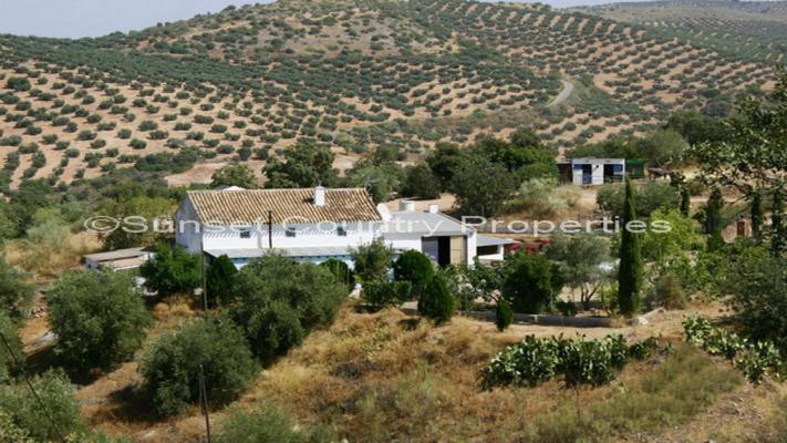 Spanje ~ Andalusië ~ Granada ~ Binnenland - Landhuis Finca