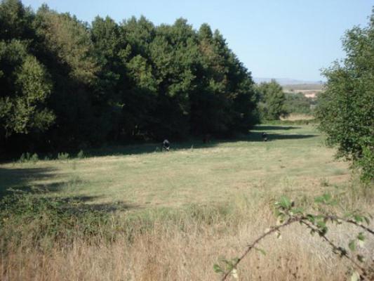 Onroerend goed bject te koop in S�o Paio - Portugal