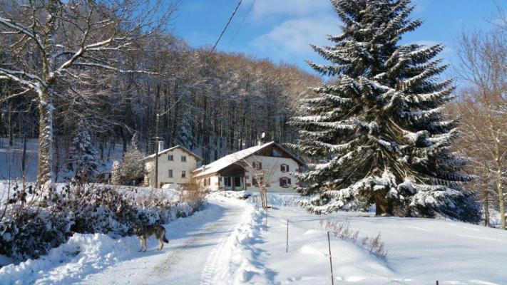 Frankrijk ~ Lorraine ~ 88 - Vosges - (Woon)boerderij