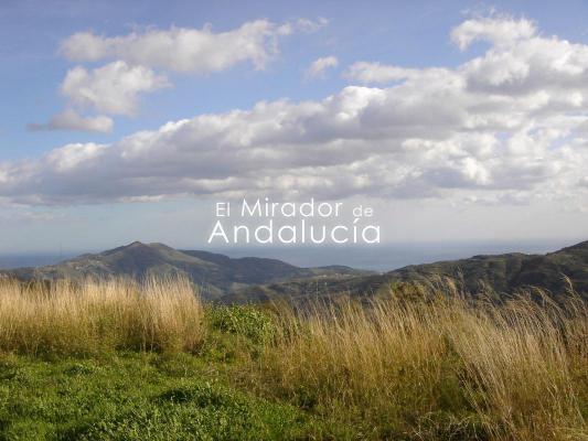 Spanje ~ Andalusië ~ Granada ~ Costa Tropical ~ Kust - Grond
