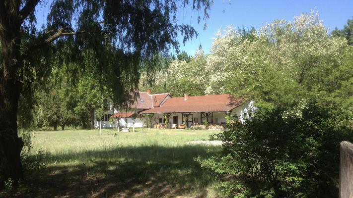Hongarije ~ Puszta / Tisza Meer ~ B�cs-Kiskun (Kecskem�t) - (Woon)boerderij