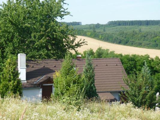 Hongarije-Pannonia(West)-Somogy(Kaposvár)-kaposvar