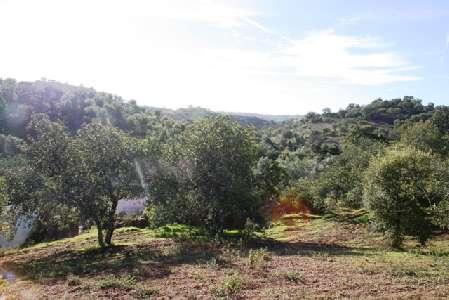 Portugal ~ Algarve (Oost) - Faro ~ Tavira - Bouwgrond